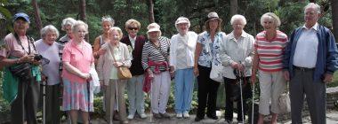Social Club Volunteering